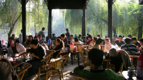 Must-Visit Attractions in Chengdu