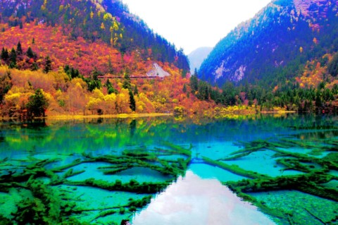 Eco-Tourism in Jiuzhaigou