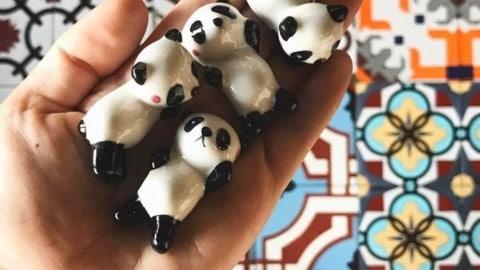 #pandas for days here in #Chengdu 🐼 @pechality