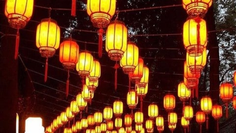 Paper lanterns 🏮 @jecikahh_