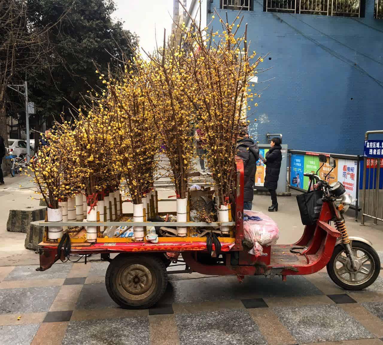 WeChat Image_20180102161804 - Chengdu Expat   Chengdu-Expat com